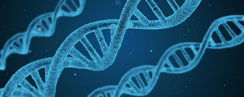 gene editing and IVF success
